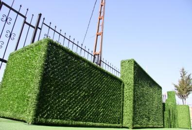 Vertical Landscape Plant Application