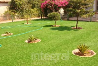 Peragrass Artificial Turf Garden Application